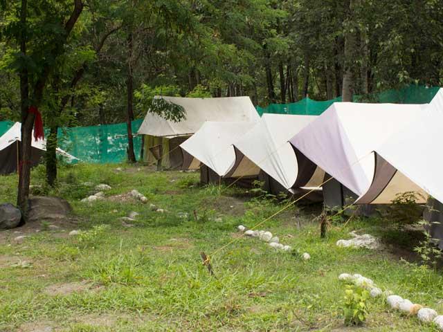 camp-jungle-brooks-tents
