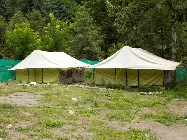 camp-jungle-brooks